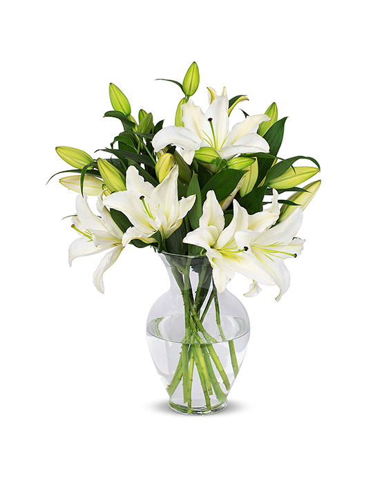 8 Stem White Lily Bunch